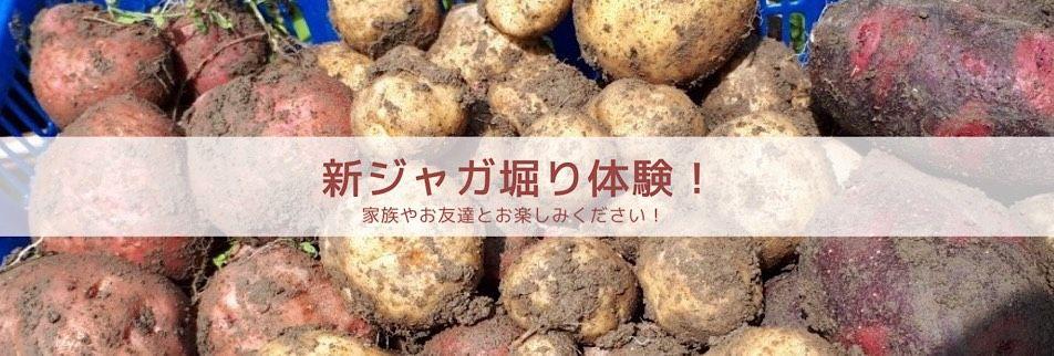 田舎と農業を守る八百屋 【荒木商店】